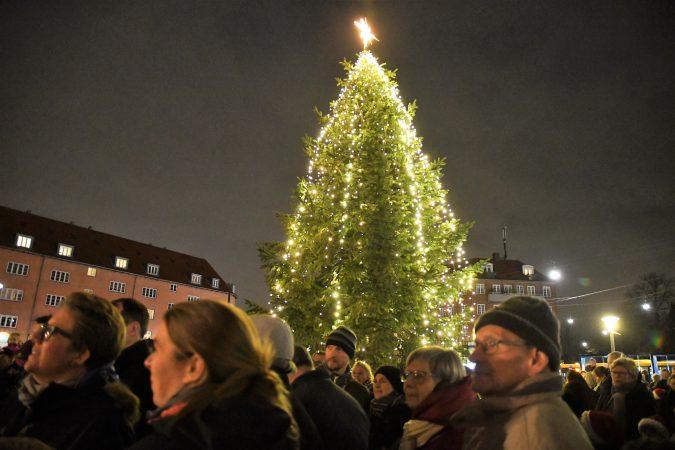 juletræer brønshøj
